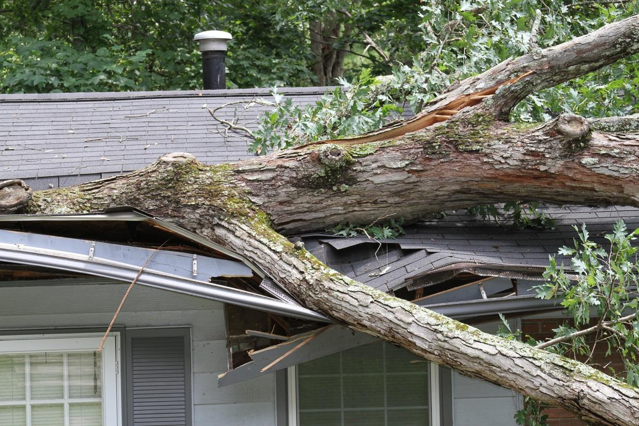 Should I Get Roof Insurance?