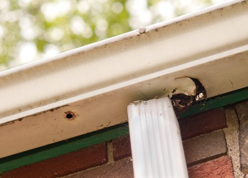 exterior renovations calgary